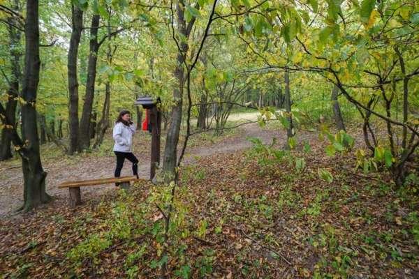 Képtalálatok a következőre: pilisi erdő egyperces novellák