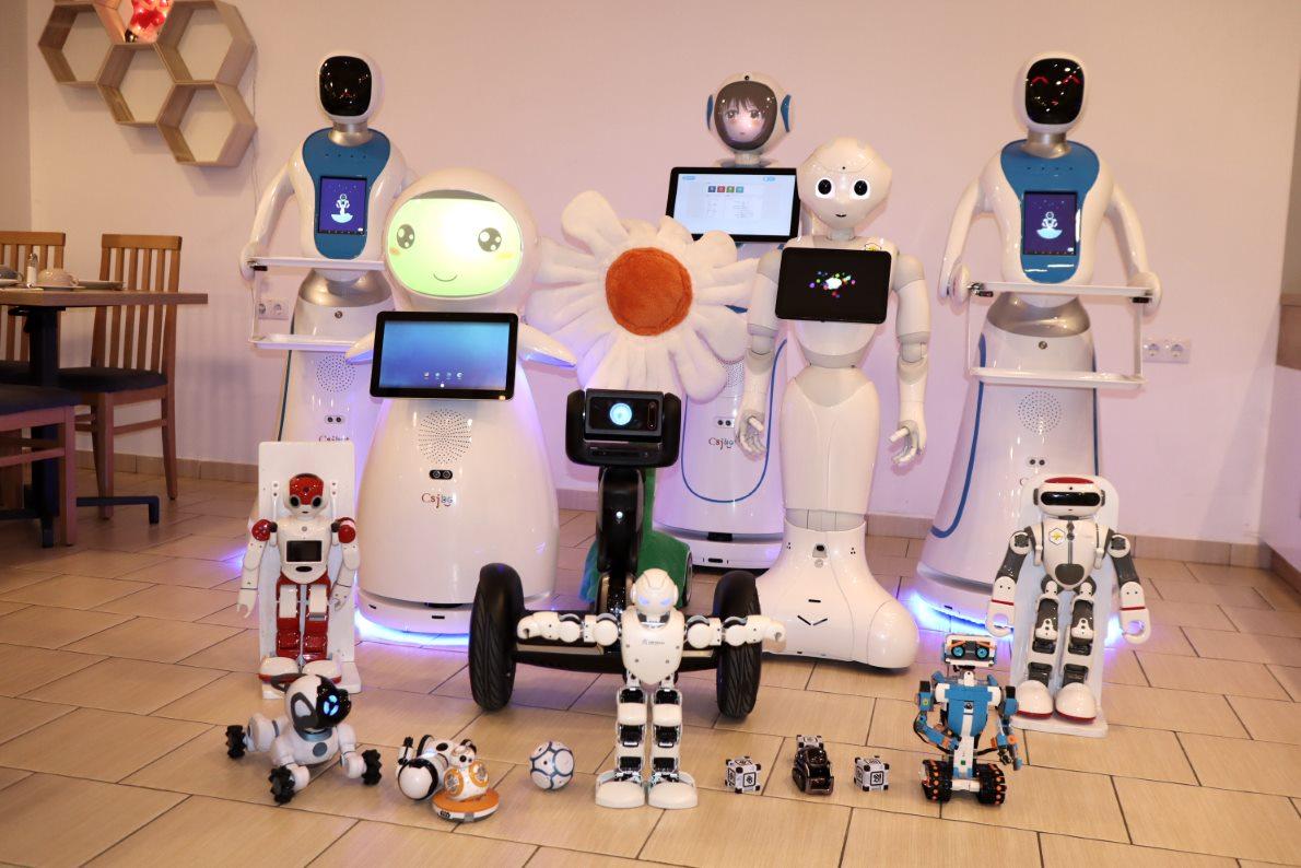 robot pénzt keres)