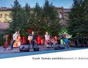 Cseh Tamás emlékkoncert a Kálvin-udvarban
