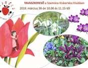 Tavaszkereső - kertészkedés mesehősökkel