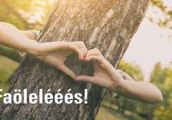 Ma te is ölelj meg egy fát! - Rekordkísérlet március 21-én, az Erdők Világnapján