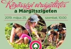 Tedd meg MAgadért! - Közösségi virágültetés a Margitszigeten