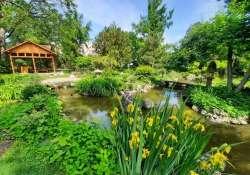 Megnyílt a zuglói Japánkert