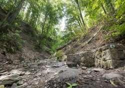 Járt utat most hagyd el a járatlanért az erdőben!