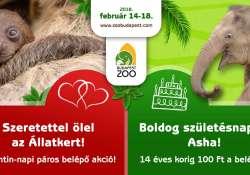 Valentin-napi dupla kedvezmény az Állatkertben