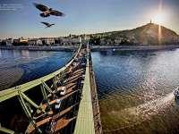 Dunapest - Fesztivál a vízen
