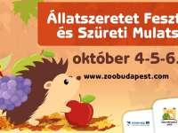 Állatszeretet Fesztivál és Szüreti Mulatság