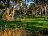 Elkészült a botanikus kert,  kutyás élménypark és a futókör a Városligetben