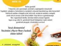 Rajzpályázat gyerekeknek vidám boroscimke tervezésére