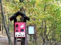 Hív az erdő - Tárcsázz verseket piros telefonon a Pilisben
