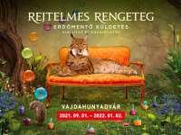 Rejtelmes rengeteg - Erdőmentő Küldetés - ÚJ kiállítás és kalandjáték a Vajdahunyadvárban