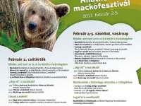 Mackófesztivál az Állatkertben - Lesz-e árnyéka a medvének?