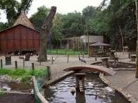 A Margitszigeti Kisállatkert